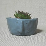 Succulent Planter or Quirky Face Pot Handmade and Painted, suitable indoors and outdoors ideal Cacti or Succulent plant pot