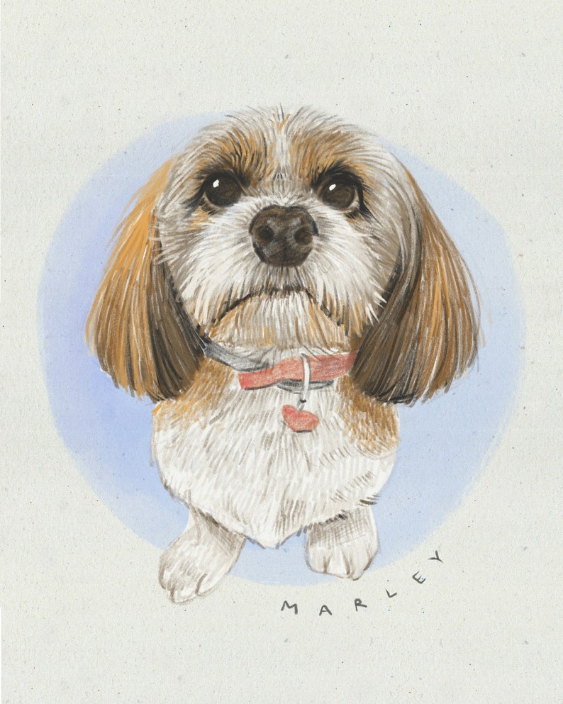 DIGITAL Custom Pet Portrait Illustration in Colored Pencil Style