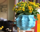 3D Printed Polyface Planter
