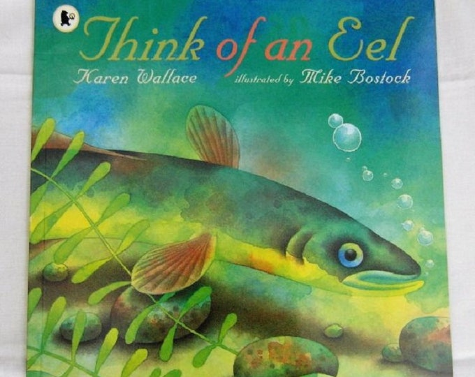 Think of an Eel by Karen Wallace New Paperback book Childrens NON Fiction Picture Book Lifecycle