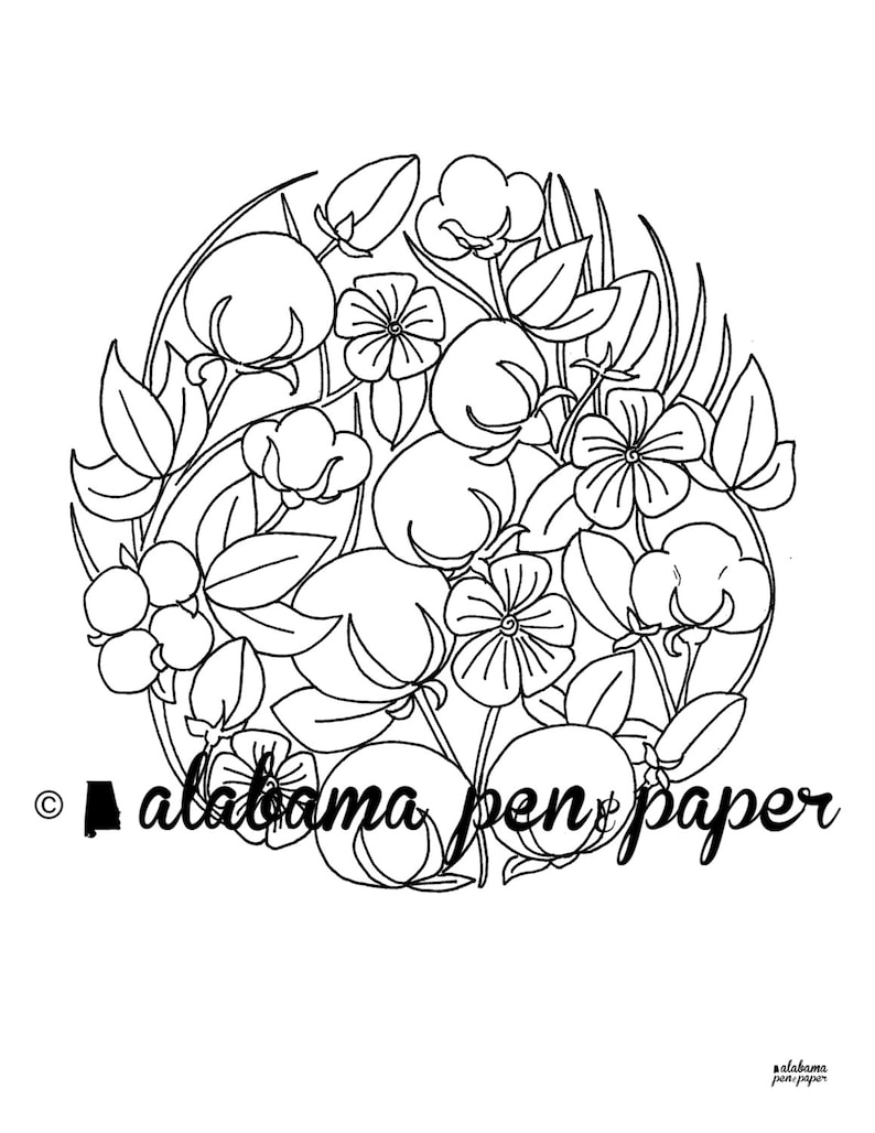 Southern Cotton Coloring Page Etsy