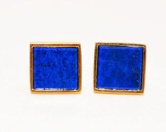 Lapis Lazuli 10.75mm 14kt Yellow Gold Solitaire Gemstone Stud Women's Earrings