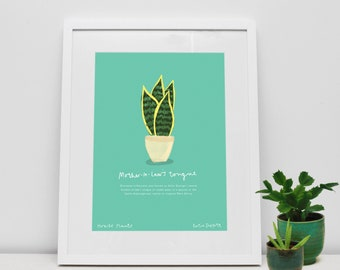 Mother-in-Law's Tongue House Plant Print by Katie Duffett