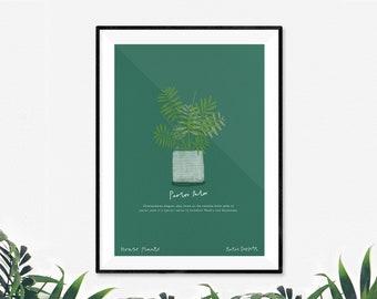 Parlor Palm House Plant  Print by Katie Duffett