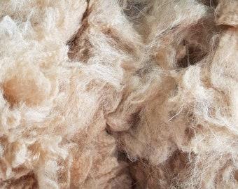 - 200-230mm length 1oz Suri Alpaca locks washed /& combed 30g