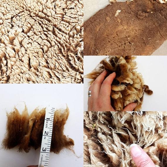 Soay unwashed raw sheep fleece wool knitting weaving spinning 1kg crafts
