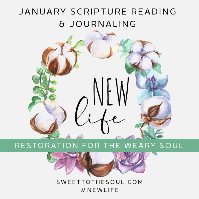 New Life  Soul Inspired Daily Scripture Journal Download  image 0