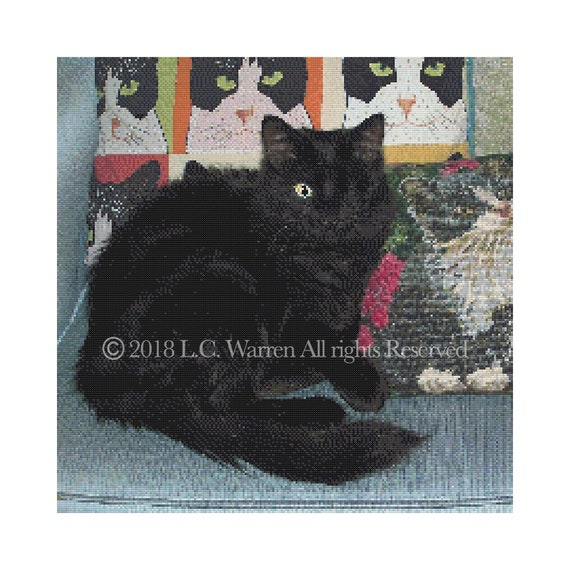 Counted Cross Stitch Chart Only Pdf Cats Eye Etsy