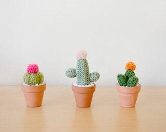 Mini Crocheted Cacti Trio
