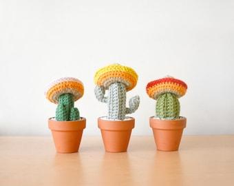 3 Amigos Mini Crocheted Cacti Set