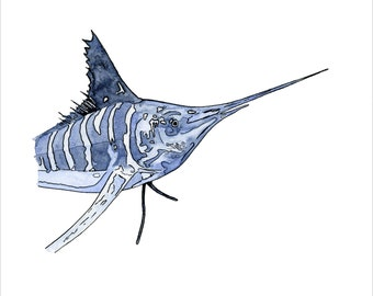 Striped Marlin Original 8X10 Watercolor Painting