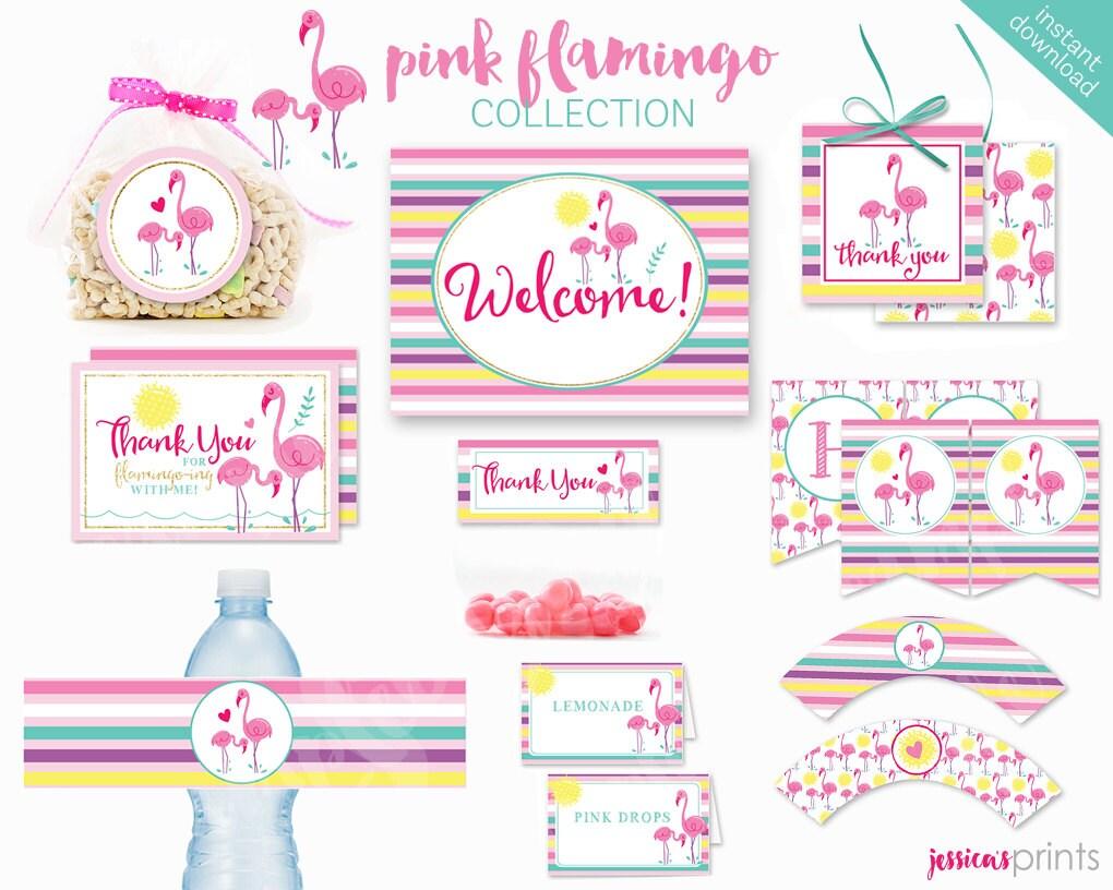 Instantánea Descargar colección fiesta imprimible Flamingo   Etsy