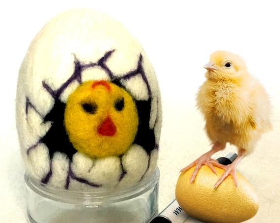 Wool Easter Egg - White Hatching Chic Egg - Needle Felted Wool Sculpture - Handmade Easter Egg - Easter Ornament - Easter Egg Gift