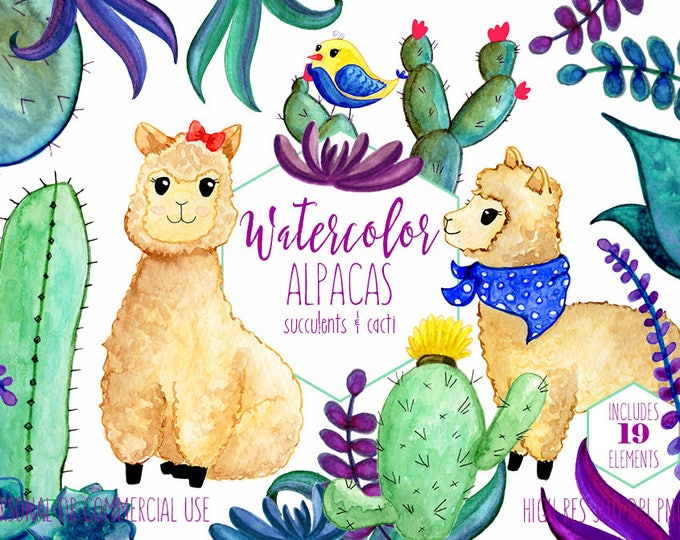 WATERCOLOR LLAMA Clipart Commercial Use Clip Art Cute Alpaca Cactus Succulents Cacti Plants Hand Drawn Clipart Kawaii Desert Animal Graphics