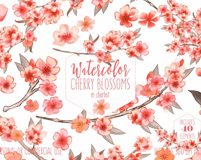 PEACH WATERCOLOR FLOWERS Clipart Commercial Use Clip Art Wedding Floral Cherry Blossoms Sakura Branches Floral Wreath Invitation Graphics
