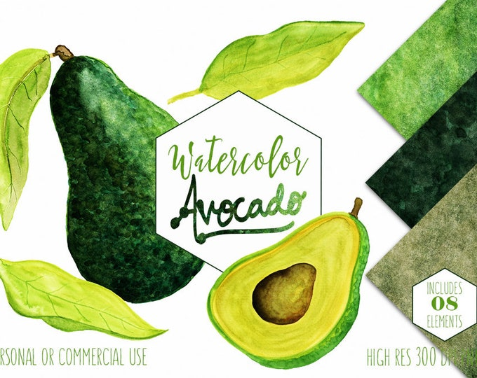 WATERCOLOR AVOCADO Clipart Commercial Use Clip Art Avacado Vegetable Fruit Menu Clipart Healthy Foods Watercolor Digital Background Papers