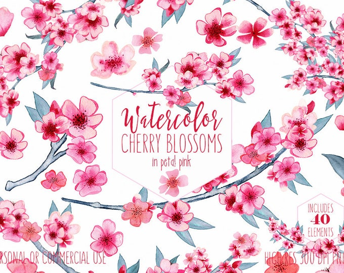 WATERCOLOR CHERRY BLOSSOMS Clipart Commercial Use Clip Art Pink Wedding Floral Wreath Petals Branches Spring Flower Bouquets Sakura Graphics