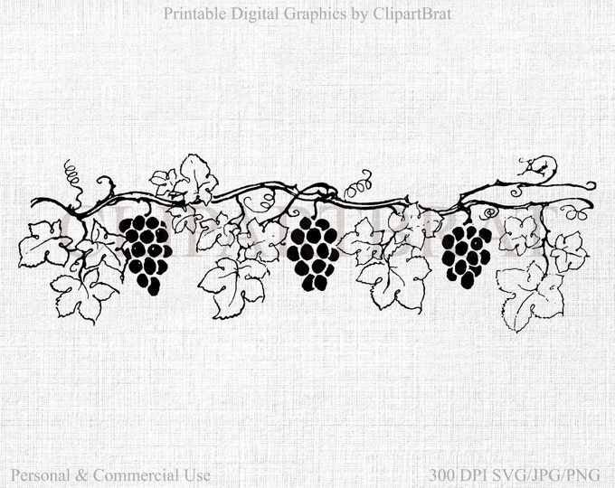 GRAPE VINE CLIPART Commercial Use Clipart Grapes Digital Collage sheet Grape Vine Fabric Transfer Clipart Vector Clipart Jpg/Png/Svg