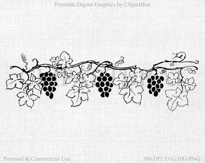 GRAPE VINE CLIPART Commercial Use Clipart Grapes Digital Collage sheet Grape Vine Fabric Transfer Clipart Vector Clipart Jpg/Png/Svg