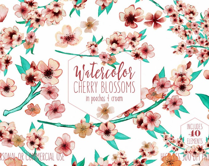 BLUSH WATERCOLOR FLORAL Clipart Commercial Use Clip Art Wedding Sakura Branches Cherry Blossom Flowers Floral Wreath Invitation Graphics