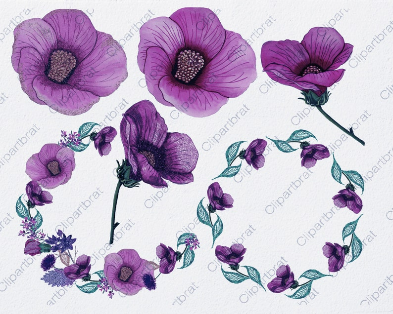 Purple Hibiscus Flower Clipart Commercial Use Clip Art Etsy
