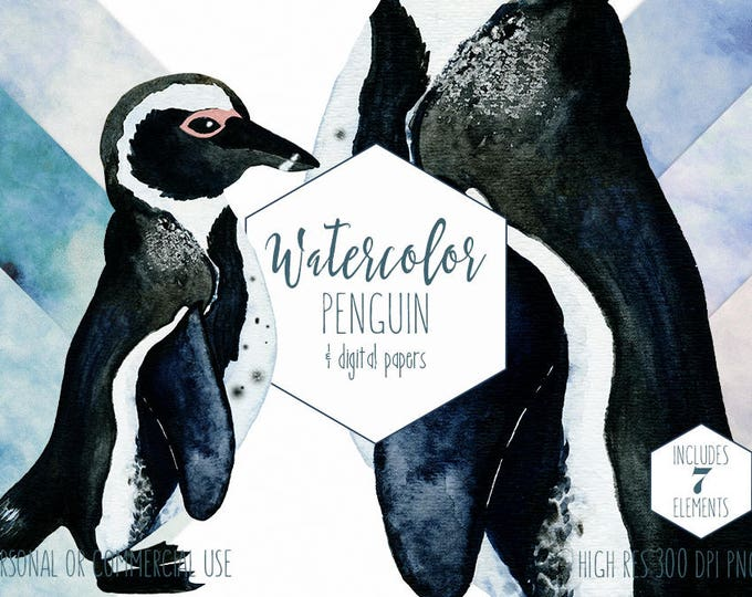 AFRICAN PENGUIN Watercolor Clipart Commercial Use Clip Art Watercolour Penguin Winter Penguin Illustration Blue Watercolor Digital Papers