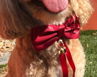 Red Bow Tie and Ring Bearer Collar