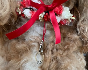 Ring Bearer Dog Collar for Weddings and Proposals