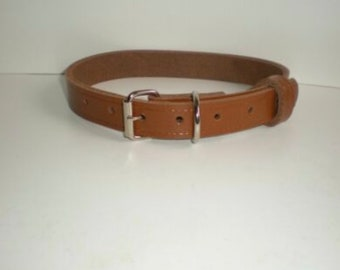 Postage upgrade for Dog Collars for UK orders - guaranteed delivery day after posting