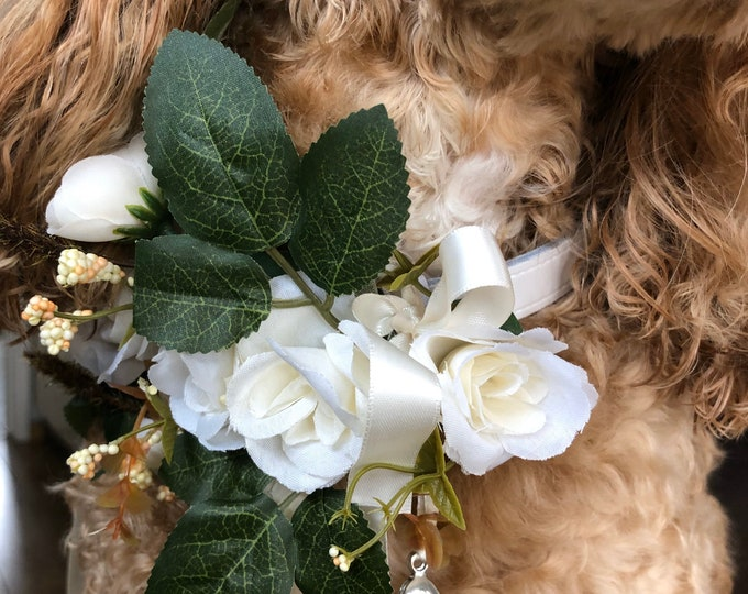 Ivory Flower Ring Bearer Dog Collar - Choice of ribbon colour