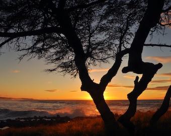 Sunset at Papohaku