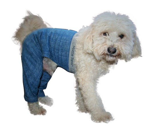 Walking Dog Pants Dog Wounds Dog Surgery Dog Cone Keep Clean E Collar Recovery Collar Alternative Quality Pet Clothing