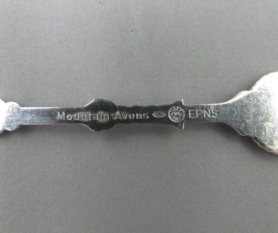 Northwest Territories Coat of Arms MOUNTAIN AVENS Flower NWT Canada Collectible Souvenir Spoons