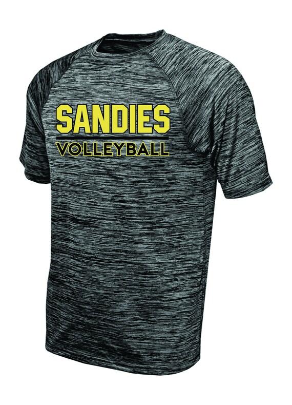 Sandies Volleyball SHORT SLEEVE Tee