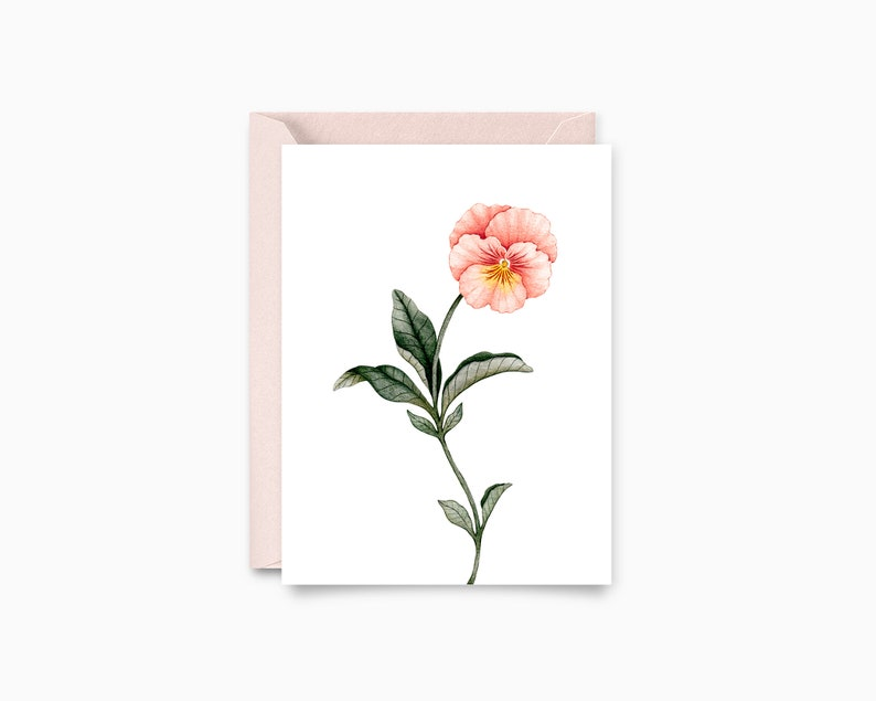 Fleur Pensée  greeting card  botanical Illustration image 0