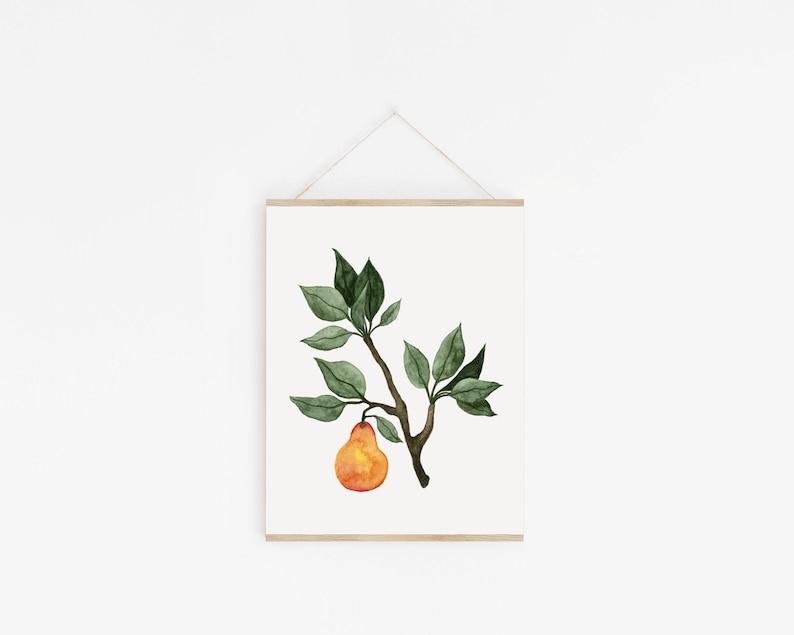 Botanical Pear Art Print image 0