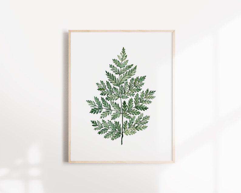 Poster Grande Fougère  Botanical Illustration  Art Print image 0