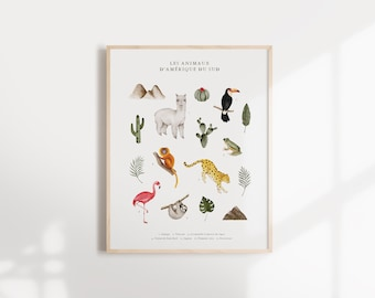 Animals of South America - Educational poster for children