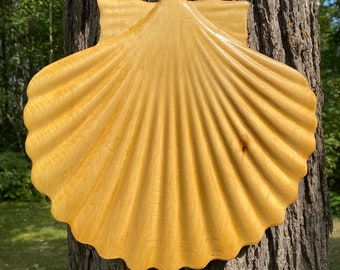 Large Camino Scallop Shell #528