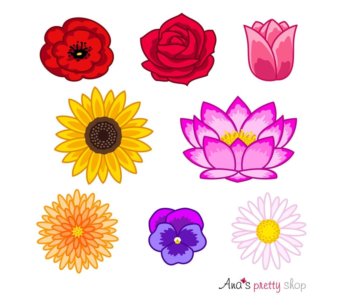 Flowers Clip Art Flowers Clipart Colorful Flowers Flower Etsy