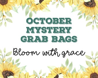 October 2021 MYSTERY GRAB BAGS   Bloom with Grace   Planner Stickers   Mini Stickers   Stationery Goodies   Fantastic Value