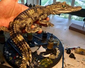 crocodile replica frame