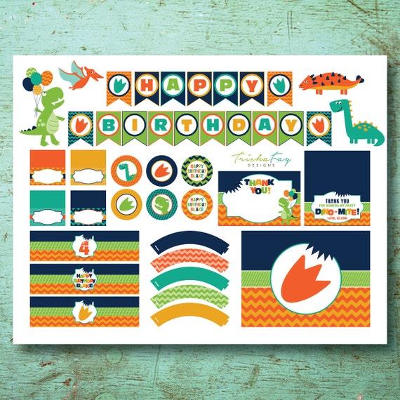 Dinosaur Birthday Party Package Dino
