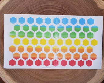Hexagon Planner Stickers, Watercolor Stickers, Color Code, Highlighter Stickers, 0.5 Inch Rainbow Checklist Dots, Planner Dots