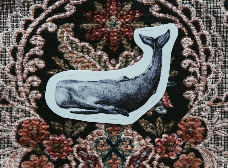 Whale Vinyl Sticker image 0
