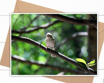 Personalized Sparrow Card