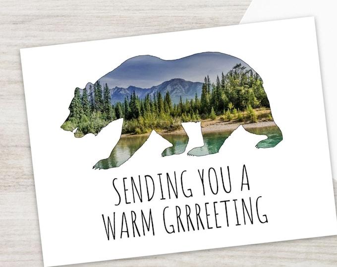 Mountain Bear Postcards