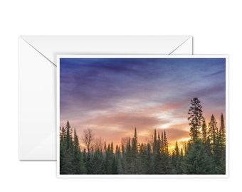 Blank Tree Card
