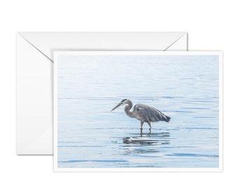 Blank Heron Card