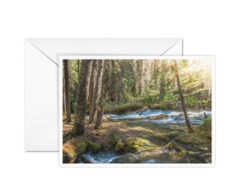 Blank Forest Card